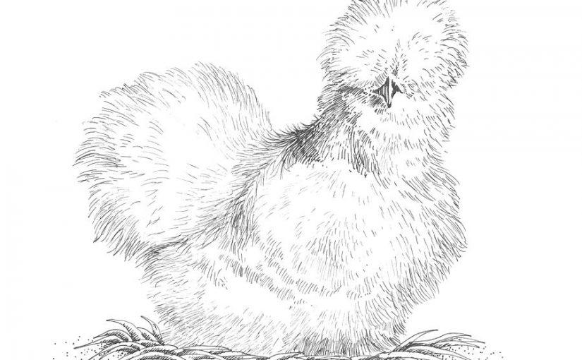 聽!母雞在那|拉摩(Rameau,1683-1764):母雞&雷史畢基(Respighi,1879-1936):鳥組曲第三樂章